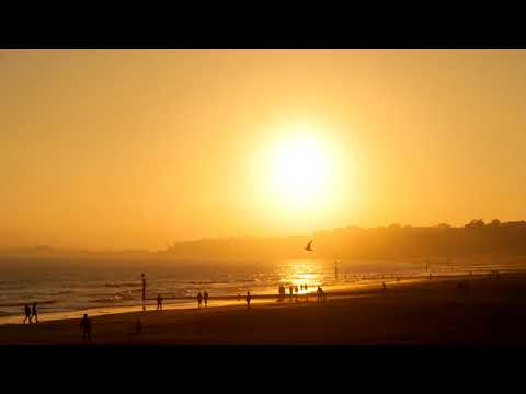 ♫Pacific Melodies Sessions 16 (Melodic Progressive House Mix)♫
