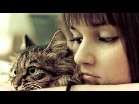 Volunteer Information Video - Spokane Humane Society