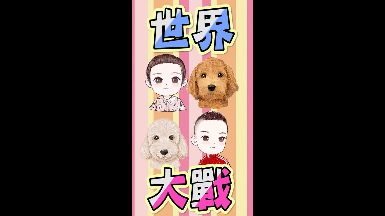 人狗大戰 寵物與兒童 媽媽看戲中【不能沒有你chou】 - YouTube