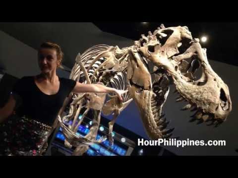 Mind Museum Walking Tour  3rd Avenue Bonifacio Global City Taguig Overview by HourPhilippines.com