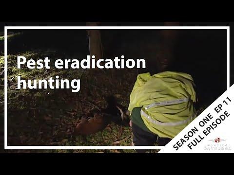 Hunting Aotearoa S01E11 - Ruatahuna & Rotoma Pest Eradication