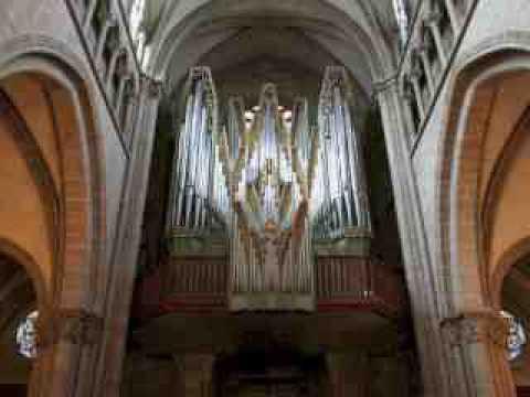 Grand Orgue Cathédral Genève Démonostration Fêtes de la Musique