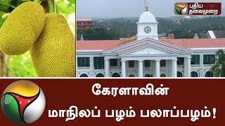 Kerala Minister Sunil Kumar announced that JACKFRUIT as State Fruit | #Kerala #Sunilkumar #Jackfruit