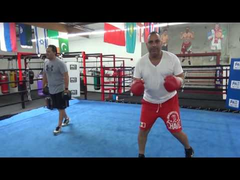 floyd maywetaher vs conor mcgregor comedian russell peters breaks it down Boxing