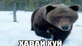 Первая мировая война (Альтернативная история с 1890 года)