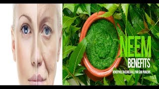 Neem Anti Aging Cream - Urdu/Hindi