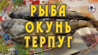 Рыба окунь. Окунь терпуг фото и видео от Petr de Cril'on & SonyKpK