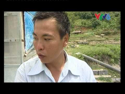 Sinh ra từ làng - Mô hình trồng rong nho - Anh Nguyễn Ngọc Thoại