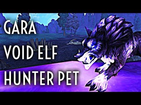 Wow Guide Spirit Beast Gara Void Elf Hunter Pet Youtube
