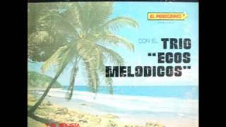 Yo Canto Como David Canta Trio Ecos Melodicos.wmv