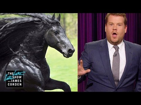 About the World's Most Handsome Horse...