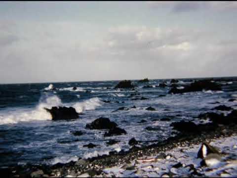Shemya Alaska (2)