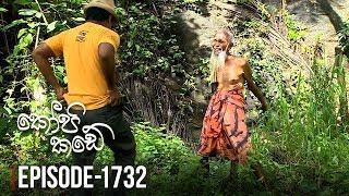Kopi Kade  | Episode 1732 - (2019-11-16) | ITN Thumbnail