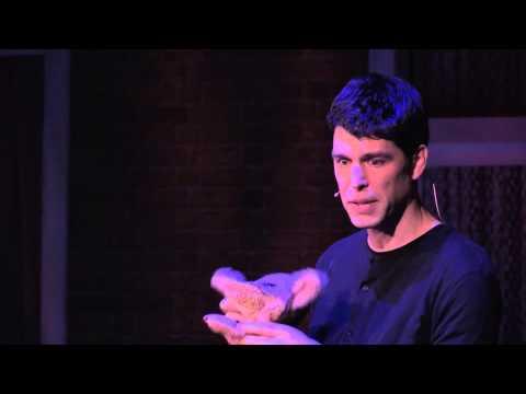 Vulnerable honesty | Yoram Mosenzon | TEDxAmsterdamED