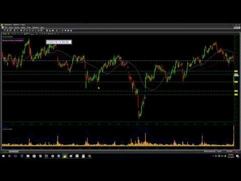 $WDAY Stock New trader $169 profit