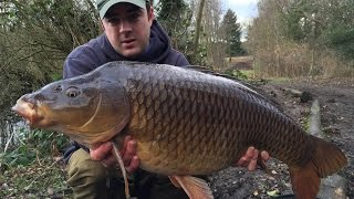 Day Ticket Carp Fishing - Rigs, Tips & Tactics