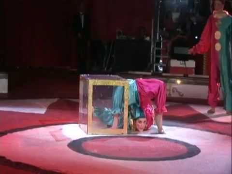 Amazing Circus Tricks Clowns Fold Into Box