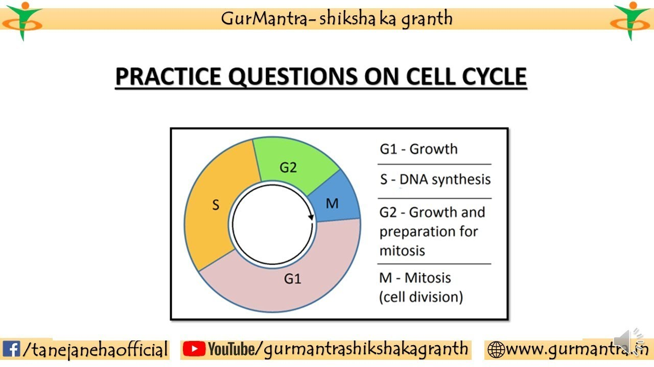 some practice questions on cell cycle correct answer for 1 question is given in comments  [ 1280 x 720 Pixel ]