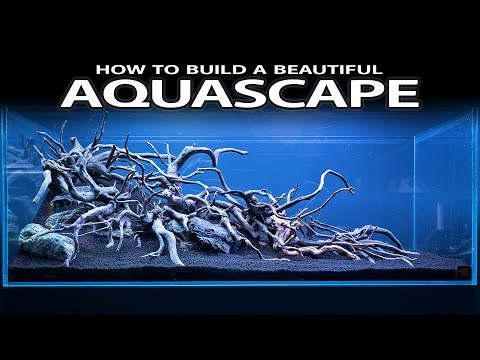HOW TO BUILD A BEAUTIFUL AQUASCAPE EASILY - INSPIRATION, HARDSCAPE, LAYOUT