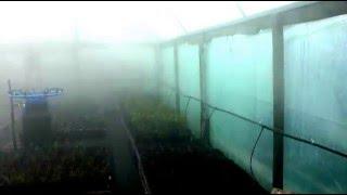 Стационарная система туманообразования для