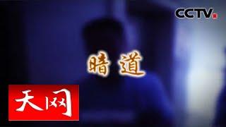 《天网》 暗道 | CCTV社会与法
