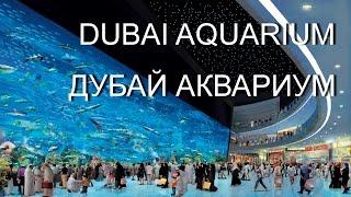 ДУБАЙ DUBAI MALL  САМЫЙ БОЛЬШОЙ АКВАРИУМ В МИРЕ DUBAI MALL AQUARIUM(s://alitems.com/g/1e8d1144948a122225b916525dc3e8/ Океанариум в Дубае рассчитан на 10 млн литров воды и имеет наибольшую в мире..., 2017-01-04T19:22:23.000Z)