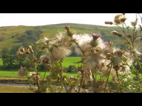 The Great British Guide to The Ribble Valley (Trailer)