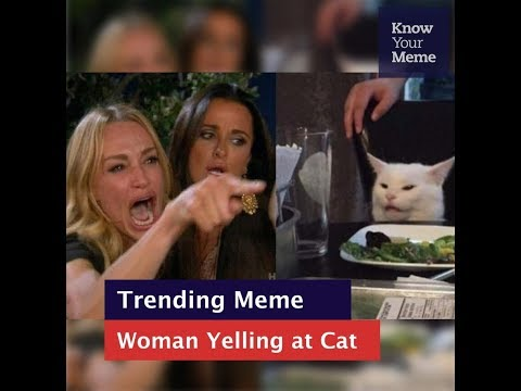 Know Your Meme 101: Woman Yelling at a Cat