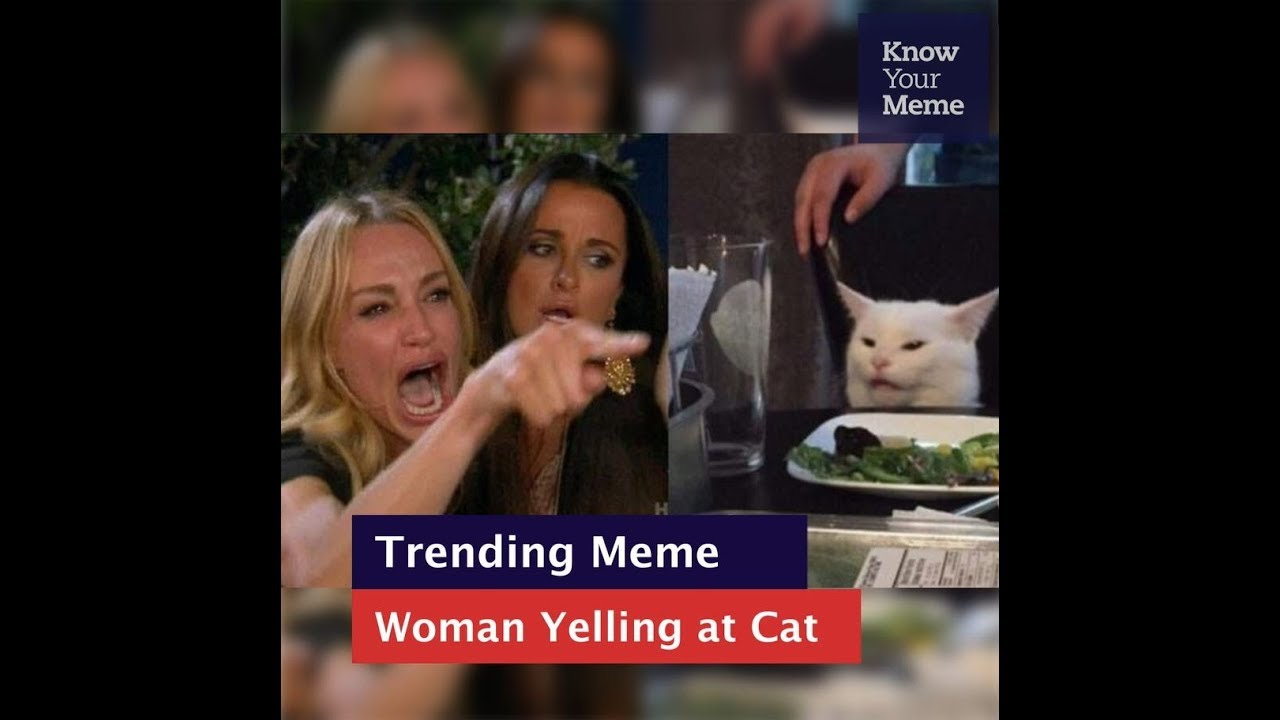 Know Your Meme 101 Woman Yelling At A Cat