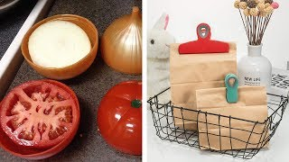 34 Useful Products Thatll Help You Waste Less Food
