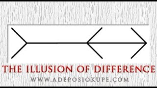 Gambar cover The Illusion of Difference