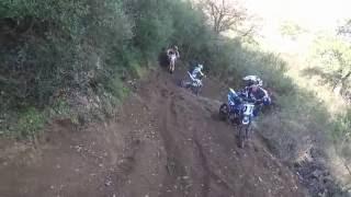 MOTOCAVALCATA OLZAI pit bike 140 yx