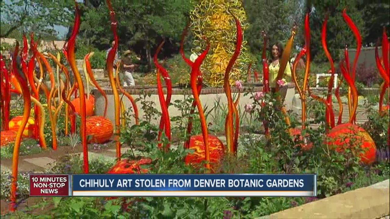Chihuly art stolen from Denver Botanic Gardens - YouTube