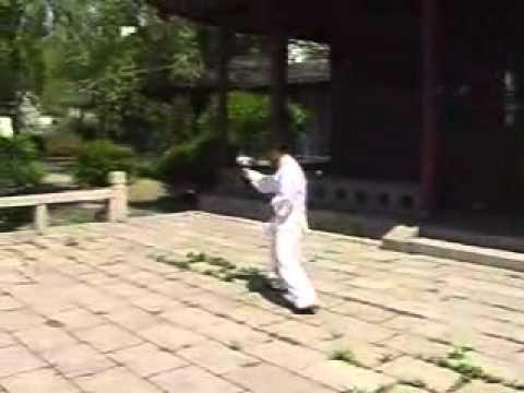 Shanxi Xing Yi Quan Mixed Fists Linking Form