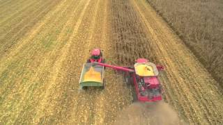Alabama Corn Harvest 2015 - Byrd Farms