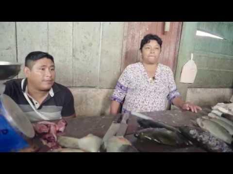 VIDEO:  ¿Para qué sirven las quirumas o palos encallados en el río?