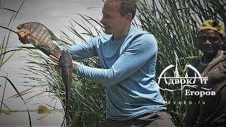 Зимняя рыбалка в Африке и другие приключения адвоката Егорова Kilimanjaro 3  серия
