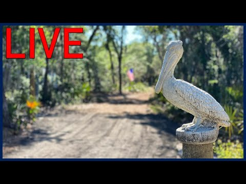 RV Chat Live: Pelicamp is complete
