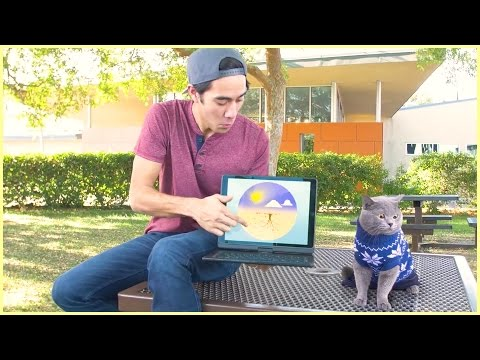 Download Youtube: Top Zach King magic tricks with pet - Best funny animals magic vines