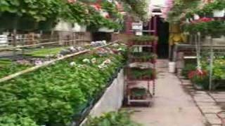 Garden Tour: Rice Road Greenhouses