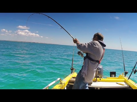 ALONE ON A TINY BOAT - SOLO Deep Sea Fishing