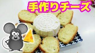 材料2つだけでチーズができる!? thumbnail