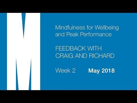 Mindfulness: Feedback from Craig and Richard - Week 2 - May 2018