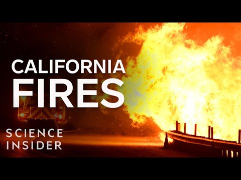 6 Ways Californians Can Control The Spread Of Wildfires