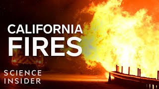An Expert Explains How To Control Wildfires In California