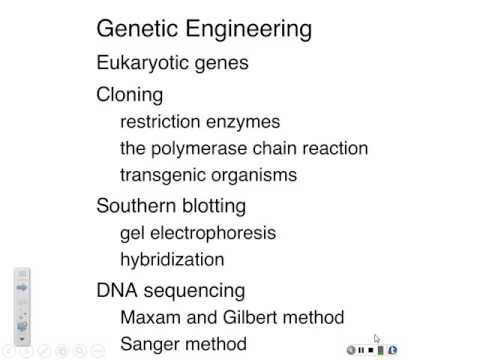 Fa15 L26: Genetic Engineering