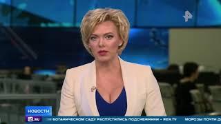 """""""За Рубежом.""""  Калейдоскоп Событий. / Видео"""