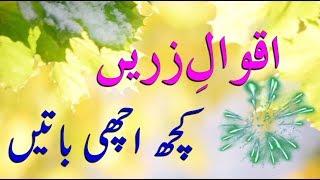 Best 13 Aqwal e Zareen in urdu | Islamic aqwal zareen | By Gold3n Wordz