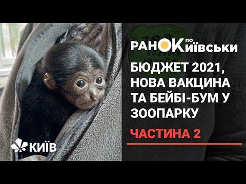 Телеканал Київ: Держбюджет 2021, вакцина від коронавірусу та бейбі-бум у київському зоопарку - частина 2