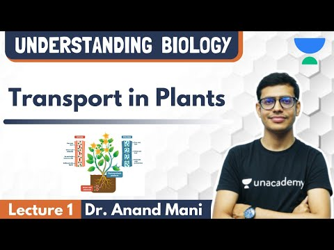 Transport In Plants | Lecture 1 | NEET Biology | NEET UG | Dr. Anand Mani